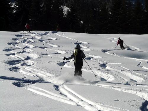 Ski à plusieurs (Crédits : libre de droits (Pixabay)