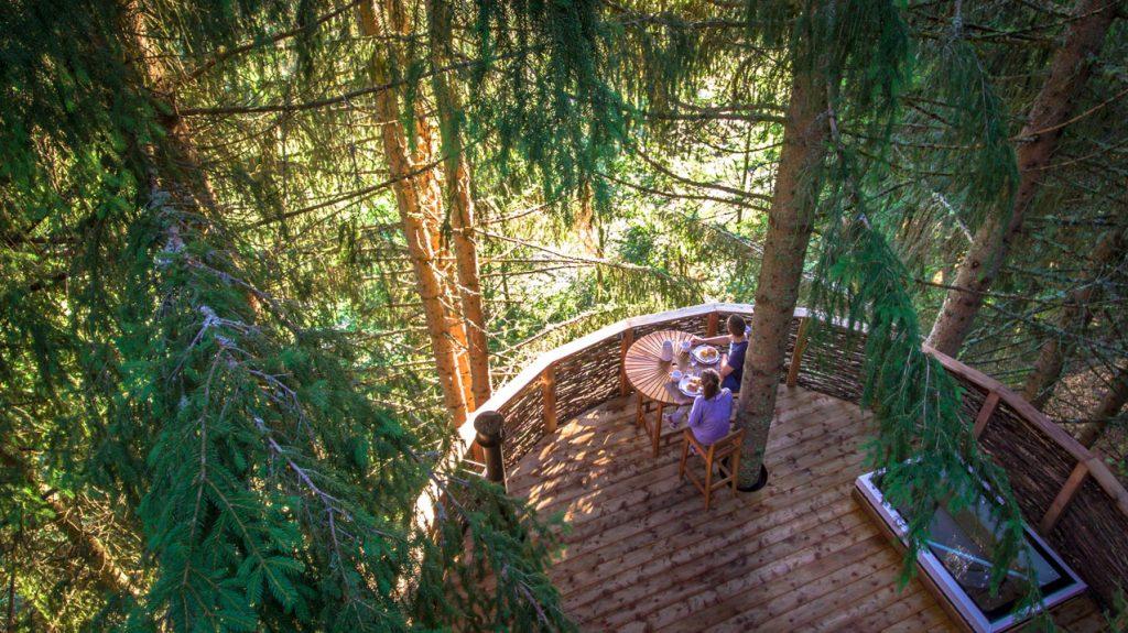 Cabane dans les arbres (montagne)