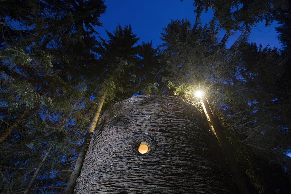 Nuit dans un nid à Flumet/Saint-Nicolas la Chapelle (Savoie)