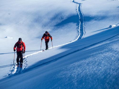 ski de randonée