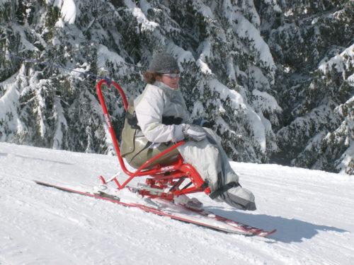 Skiart