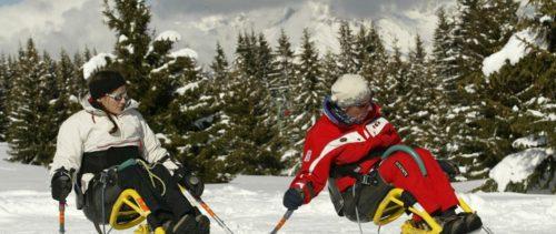 Ski assis