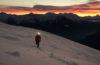 Quel équipement pour un trail blanc ?