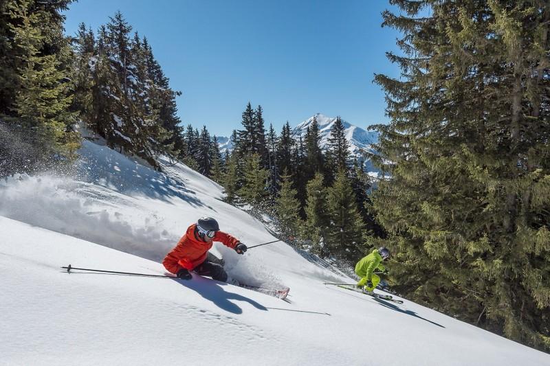 Ski de poudreuse (Crédits : libre de droits (Pixabay)