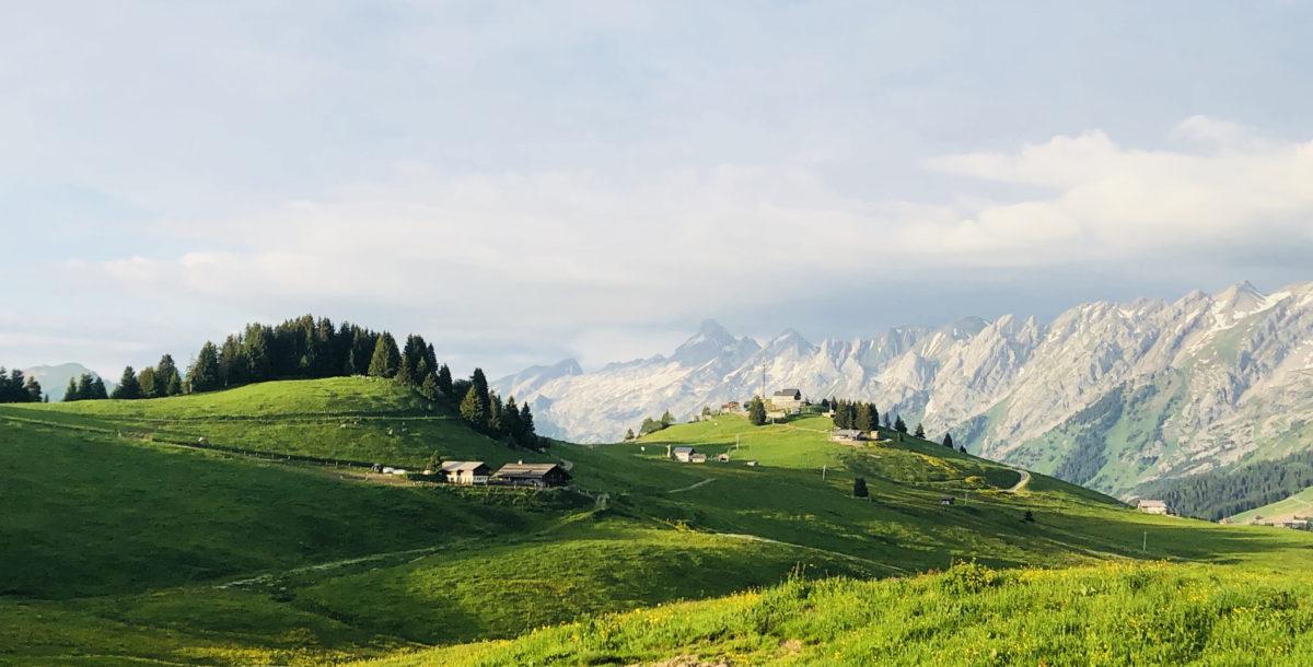 Ferme d'Alpage