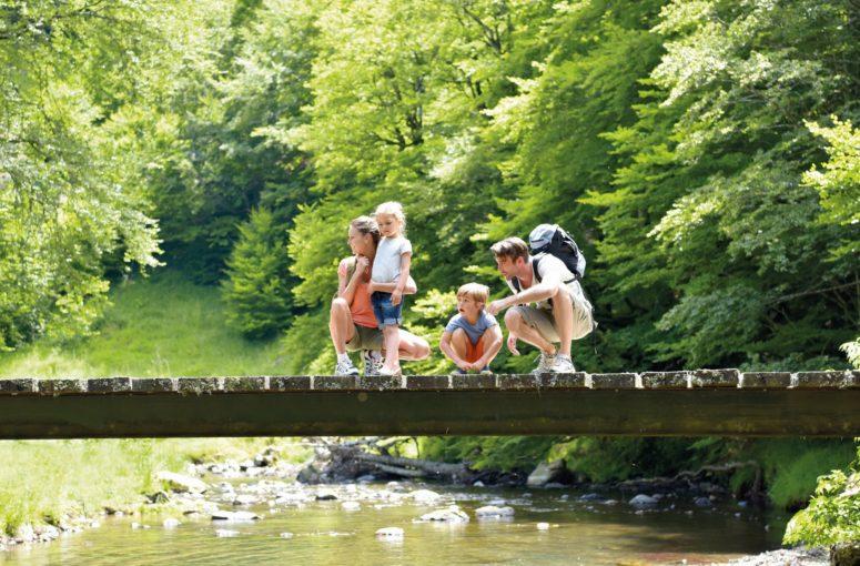La randonnée : activité star de l'été 2021 !